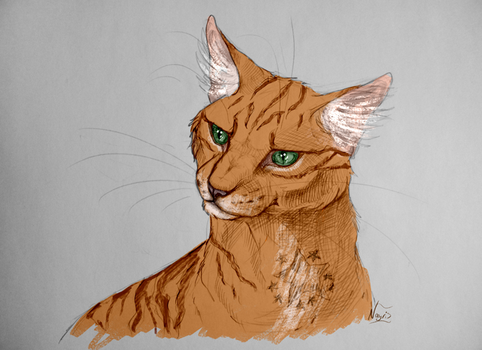 Firestar by Nayris