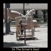 In The Driver's Seat by ceaca