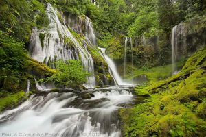 Waterfall - Panther Creek Falls by La-Vita-a-Bella