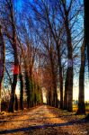Winterway by Brompled