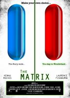 The MATRIX by bruzk