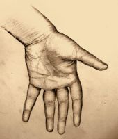 My hand/anatomy sketch by elicenia