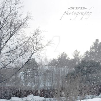 snow II by 9minutes