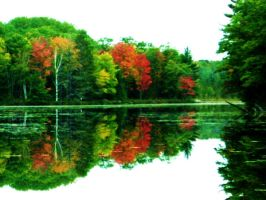 Reflection of Autumn by itskellyyxx92
