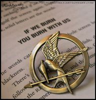 The Mockingjay's fiery words by Munchkinmay