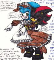 Sonadow 17th Century by DawnHedgehog555