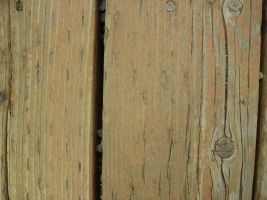 Wood Panelling by Doodlee-a
