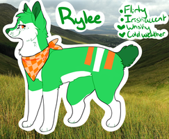 Rylee Reference by CATNlP