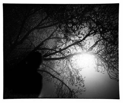 In The Darkness.. by mad-dame