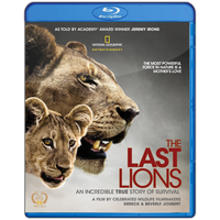 The Last Lions by prestigee
