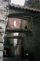 Eesti by fullmetal-chinchilla