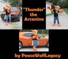 Thunder the Arcanine - Finished Partial Fursuit by PeaceWolfLegacy