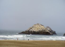 San Francisco Little Inland by CountessSana