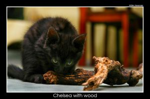 Chelsea with wood by UnUnPentium115