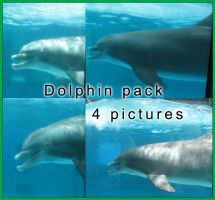 Dolphin Pack 1 by GreenEyezz-stock