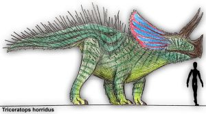Triceratops horridus by PLASTOSPLEEN