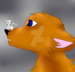 Little Fur fur, Jackle and Kitty!rain by rainbowthedragon