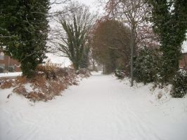 Kesgrave, Suffolk in the Snow by Anita-Sanderson