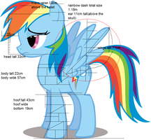 Pony of Vitruvio 6: Rainbow Dash by livintdark