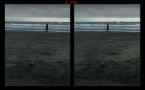 Cross view 3D Musings on the beach by shawnrl61