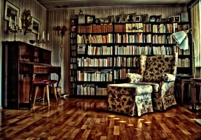 living room in HDR by sskoczek