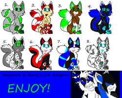 Cat Adoptables 5-OPEN- by xXStormys-AdoptsXx