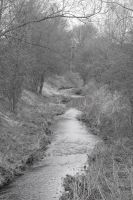 Bugbrooke Stream by Melee-pic