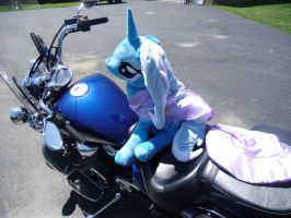 Trixie's Ride by wilshirewolf