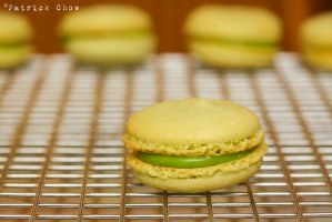 Matcha macaron 1 by patchow