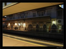 Railroad Station I by afv