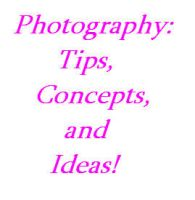 Photography tips by angelette767