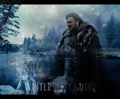 Ned Stark by StereoCatastrophe