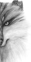 wolf face by lugiamaria