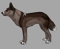 Canine adopt13 by Eternal-adopts