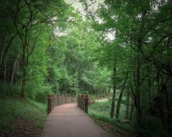 Fort Defiance Trail Path by Natures-Studio