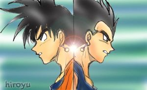 Goku and Vegeta 2 by hiroyu732