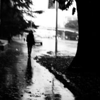 gone with the rain by HaruNiji