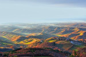 Dreamy hills of Autumn by d-minutiv