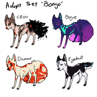 Adopt Set 'Bongo' - Closed by boniest