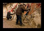 Schotte Aalst Graffiti 4 by holala830