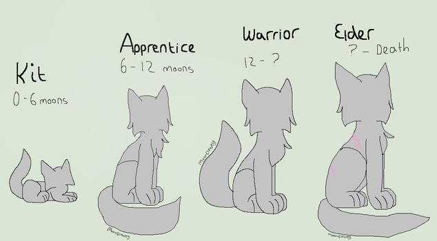 Warriors Age Chart by Moonflowey