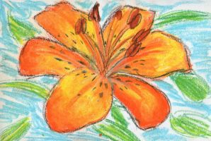 Tiger Lily - oil pastel by sadisticshiver
