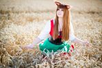 Spice and Wolf - Horo III by e-l-y-n-n