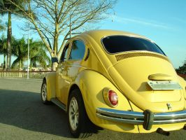 My Old beetle by styletrance