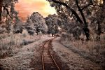 Setting Sun Across the Tracks by helios-spada