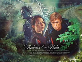 Katniss and Peeta by caroliney23