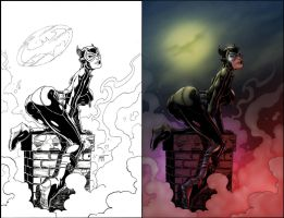 Catwoman Colored by Paul-Romero