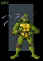 donatello by nightwing1975