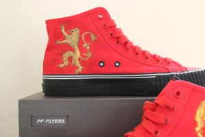 Game of Thrones - Tyrion Lannister Painted Shoes by valdakis