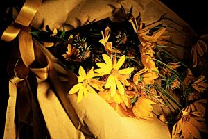 October is yellow 9 by martaraff